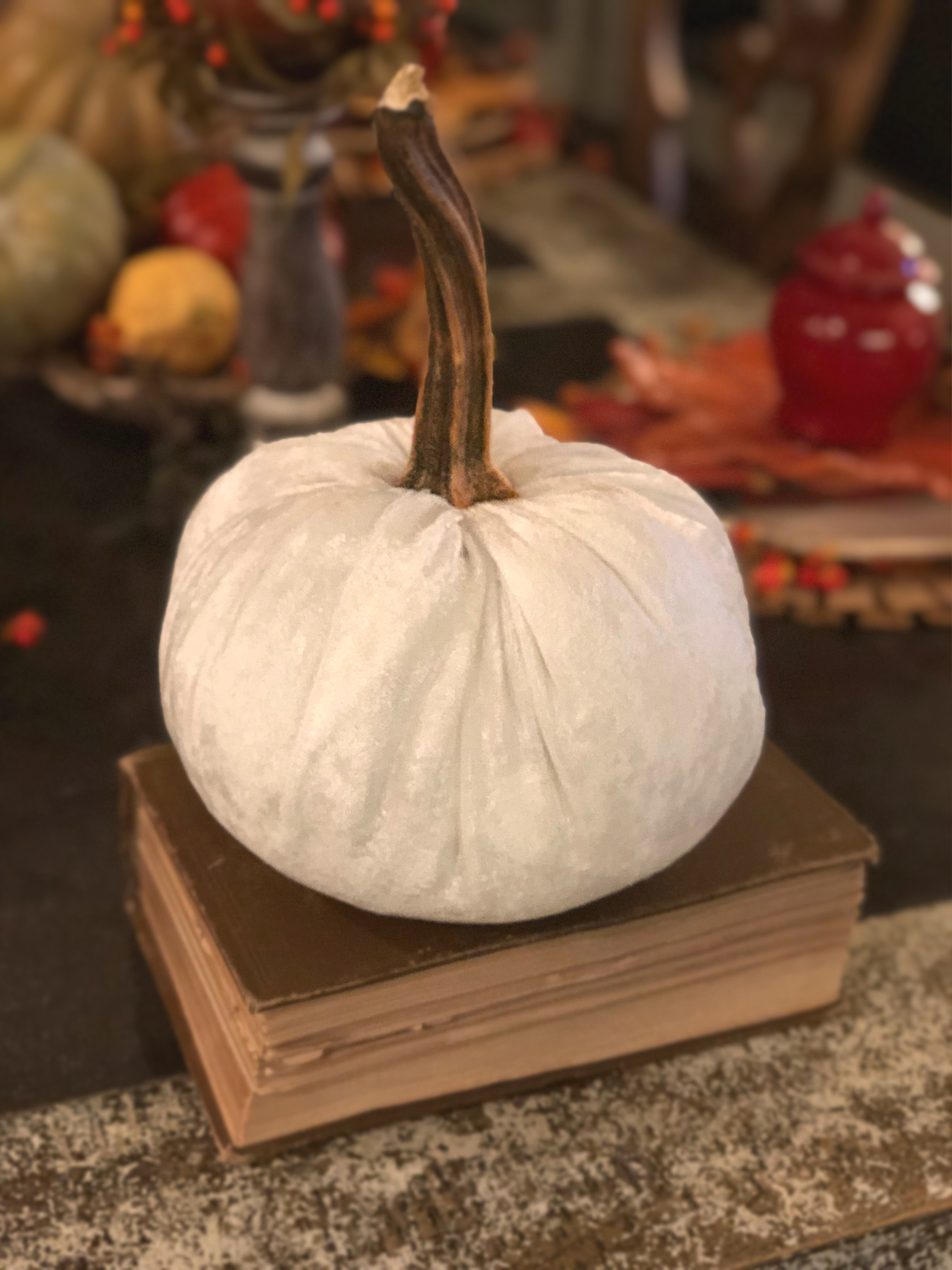 Tutorial Tuesday 7 Part Two How To Make No Sew Velvet Pumpkins My Retired Life On The Prairie